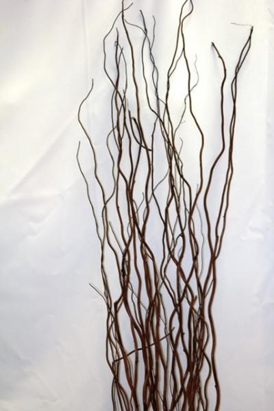 Как сделать декоративные ветки из ивы своими руками